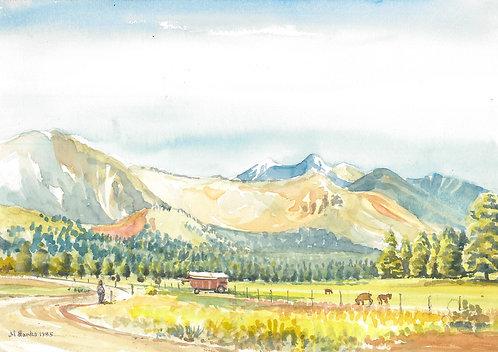 Countryside near Flagstaff, 1985