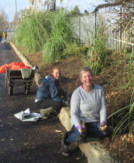 Volunteers Caroline and Kayleigh - Plant