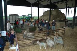 FARM-SUNDAY-119.png
