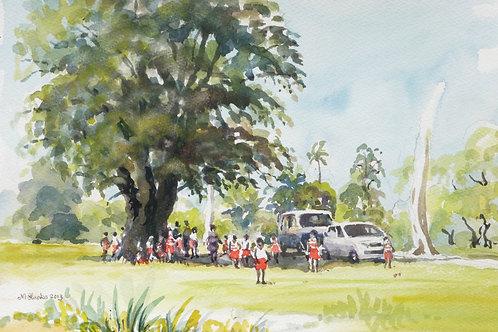 School picnic in Botanic Gardens, Georgetown, 2013