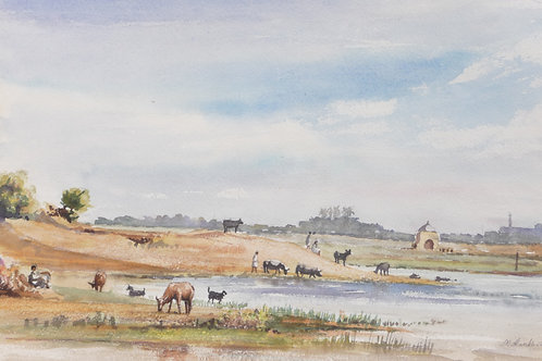 Southern countryside, 1975