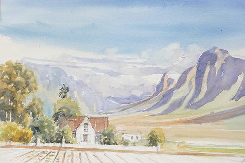 Farm scene near Stellenbosch, 1981