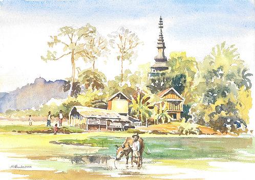 Country scene near Luang Prabang, 1999