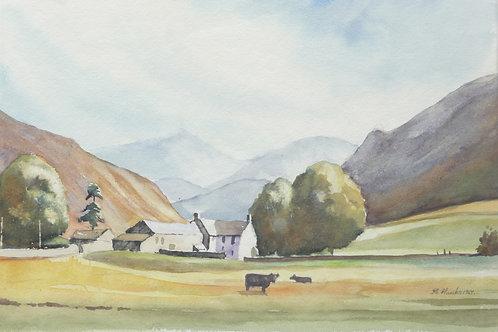 Farm at Head of Eskdale, 1967
