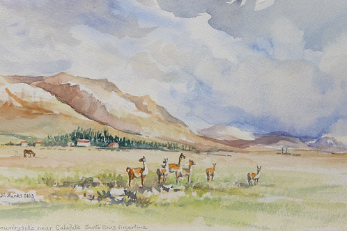 Countryside near Calafate, South Patagonia, 2003