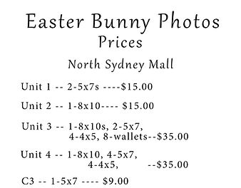 Easter Bunny Photos 2019 promotion North