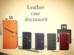 reather case document