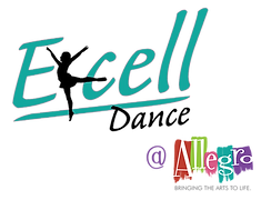 allegro excell logos.png