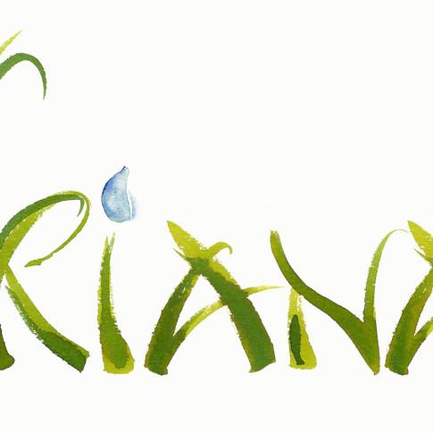 Logo-Design für einen Onlineshop für Naturkosmetik