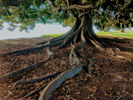 Adding Grounding Approaches to Improve Life