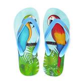 Parrots Natural Rubber Flip Flops