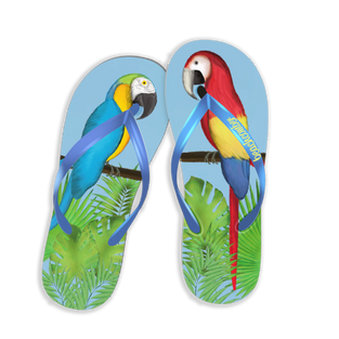 parrots flip flops