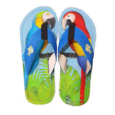 Comfort Canvas Parrots
