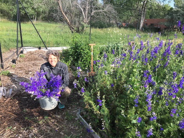 Susan with our basket of Larkspur