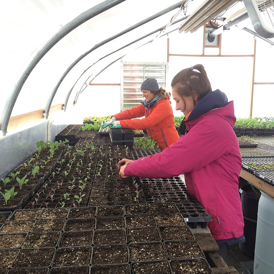 Farmer For A Day (CU Service Day) 9am-1pm, April 14