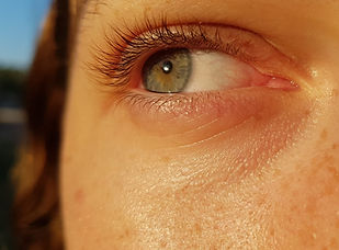 עין ג'ינג'ית.jpg