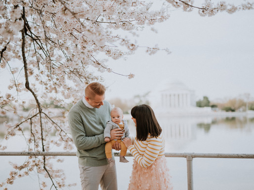 Cherry Blossom DC Family session