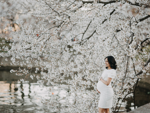 Cherry Blossom DC Maternity session