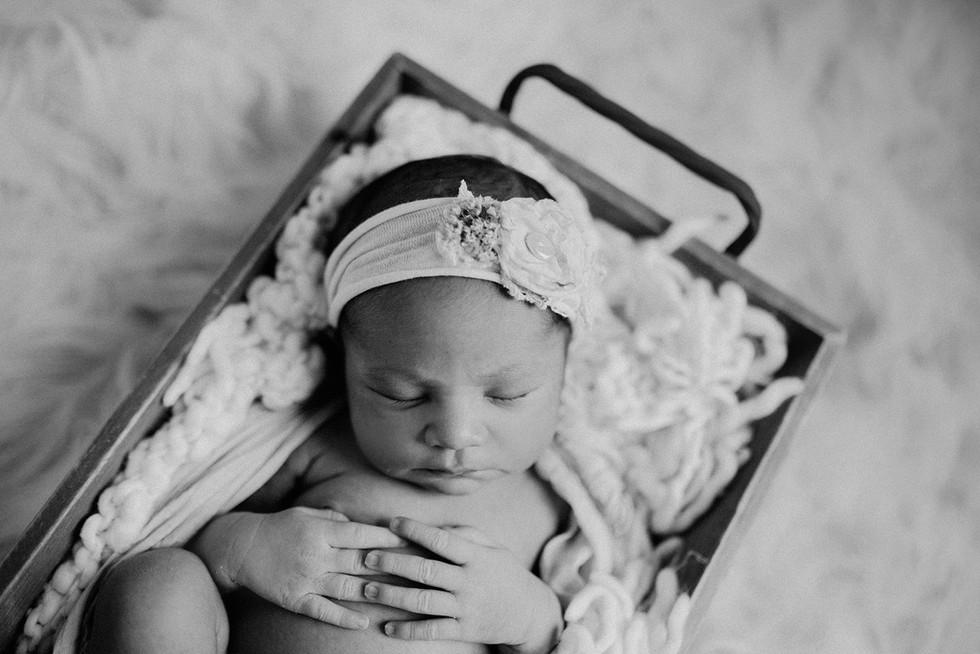 Charlottesville newborn photographer