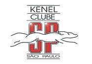 Kenel Clube São Paulo Pastor de Shetland