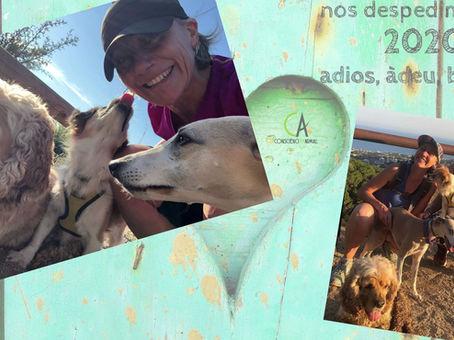 CAConsciència Animal us desitja un Feliç Any Nou, ple de salut i somriures.