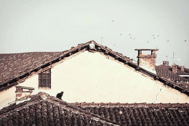 04.04 Sopra i tetti di Faule