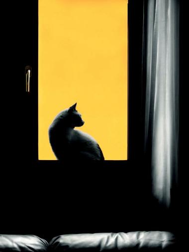 05.04 Alla finestra