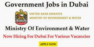 UAE Government Jobs in Dubai for Freshers 2018