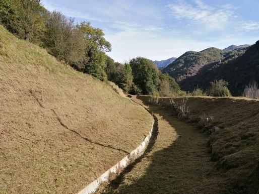 Taglio erba e pulizia Vallo (Colzate)