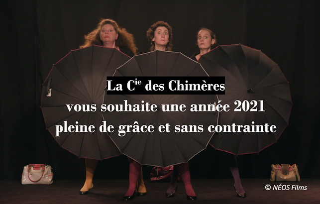 CDC_Voeux2021_Newsletter.png