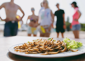 Edible Insects: The Perfect Sustainable Diet?