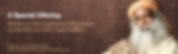 IEO Banner Brown 2 v2.png