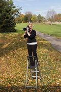 fall family photos hopkins mn