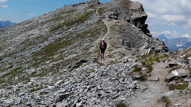 Piz_Lad_-_Gipfelpfad.jpg