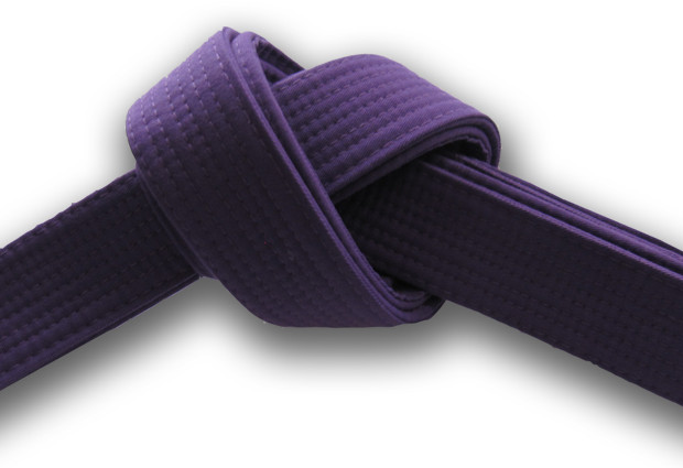 Purple Belt Requirements