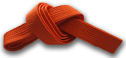Orange Belt Requirements