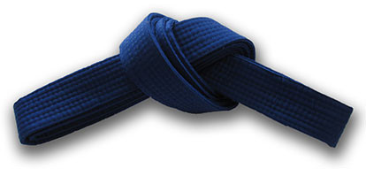 Blue Belt Requirements