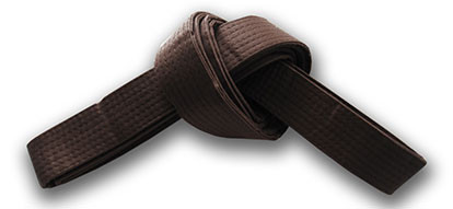 Brown Belt Requirements