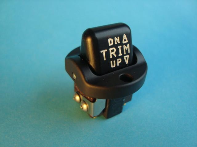 CA100-1 Trim Switch.JPG