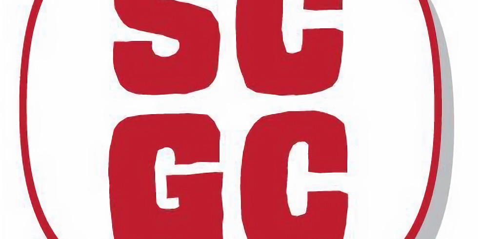 Swansea Comic & Gaming Con