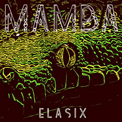 eLasix cover