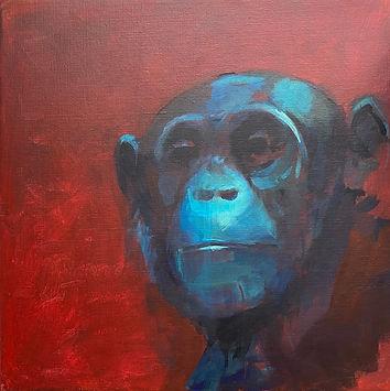 Ape SOLGT