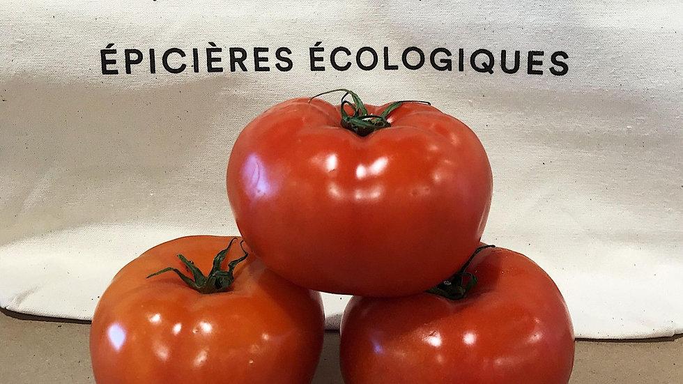 Tomate de serre rouge