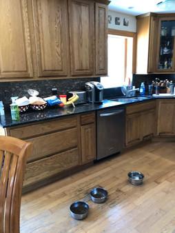 Kitchen Remodel Before.JPEG