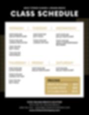 GCDC_Adult_Classes.png