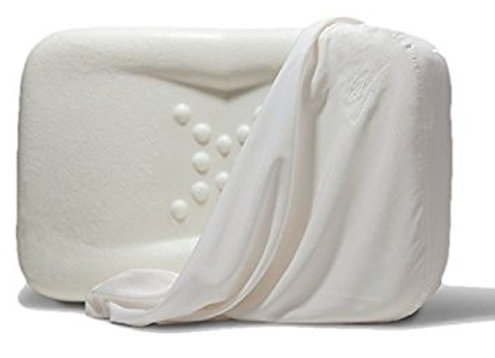 Envy Anti Aging Pillow w/ Memory Foam Small