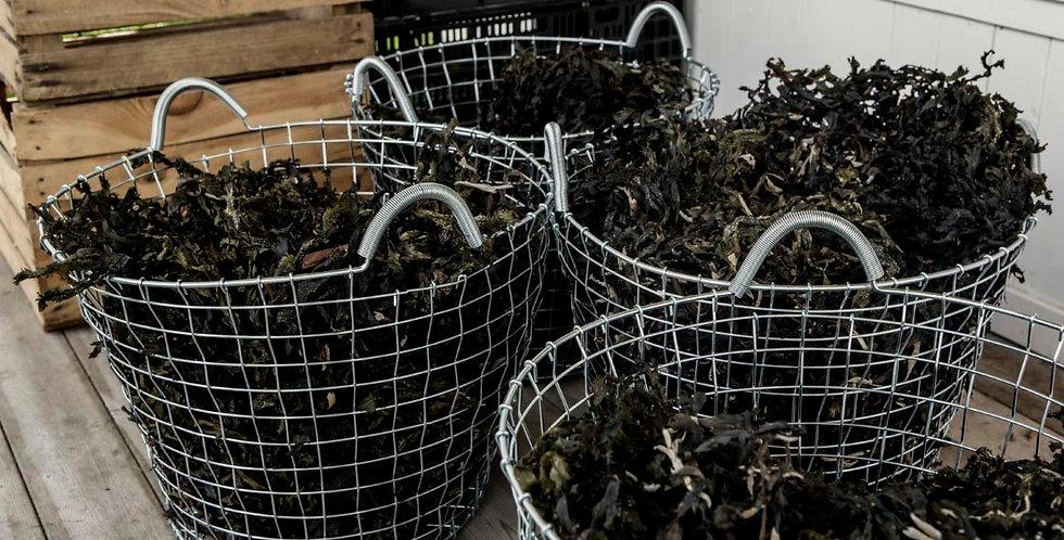 L:a Bruket Seaweed Spa Bath & Salt
