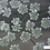 Thumbnail: Curated cutting garden seeds - White & Fresh