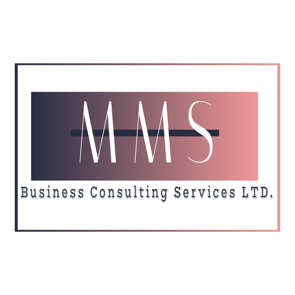 MMS Busines Consulting Services