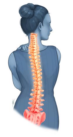 Spine Essentials